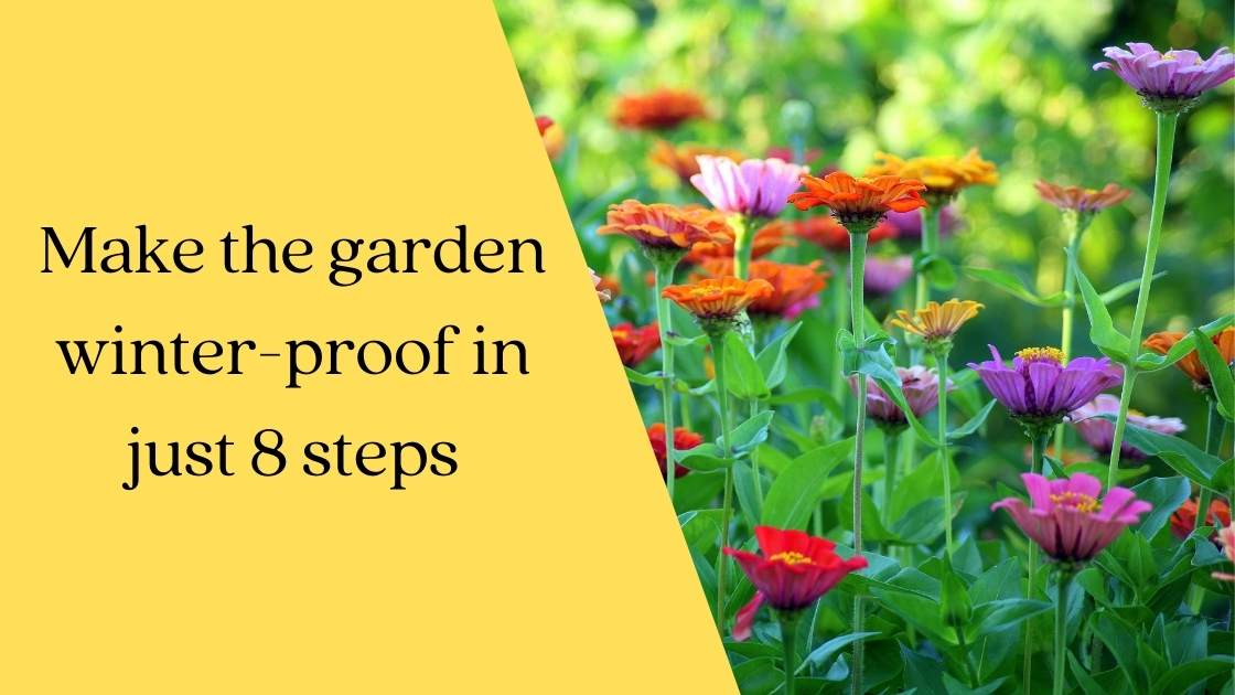 Photo of Make the garden winter-proof in just 8 steps