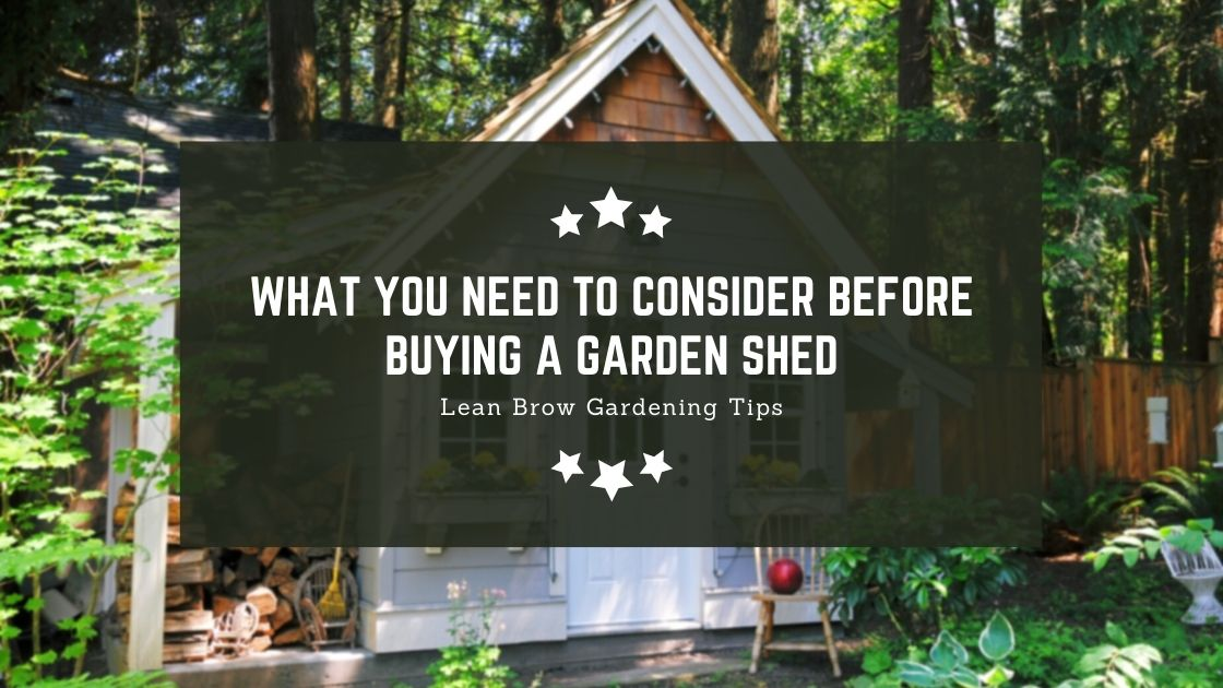 Photo of What You Need To Consider Before Buying A Garden Shed