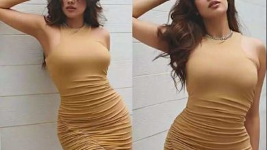 Photo of Jhanvi Kapoor shares glamorous pictures, looking beautiful in brown dress