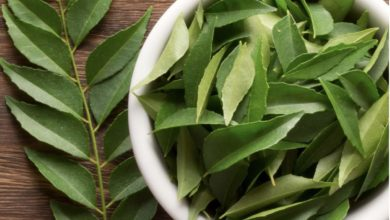 Photo of Curry leaves need these leaves for good health