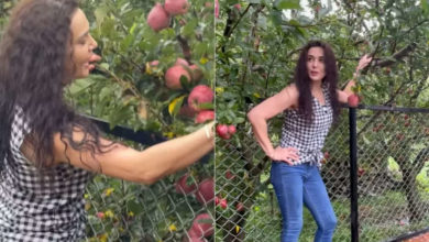 Photo of Preity Zinta has been cultivating apples grown in her farm for two years.