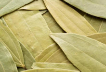 Photo of Bay Leaf And Health Benefits: Bay Leaf – Not Just For Cooking, But Health Also – Do You Know These Bay Leaf Health Benefits?